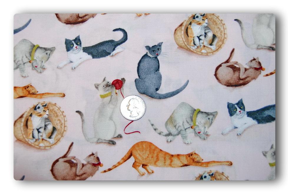 Sassy Cats-
