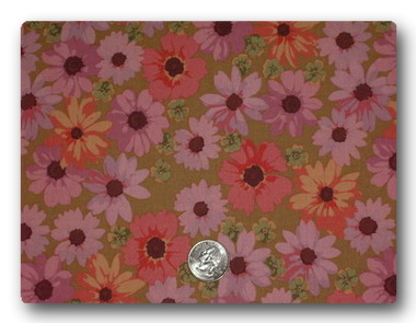 Daisy - Pink and Peach Daisies-