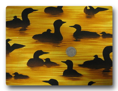 Ducks at Sunset-