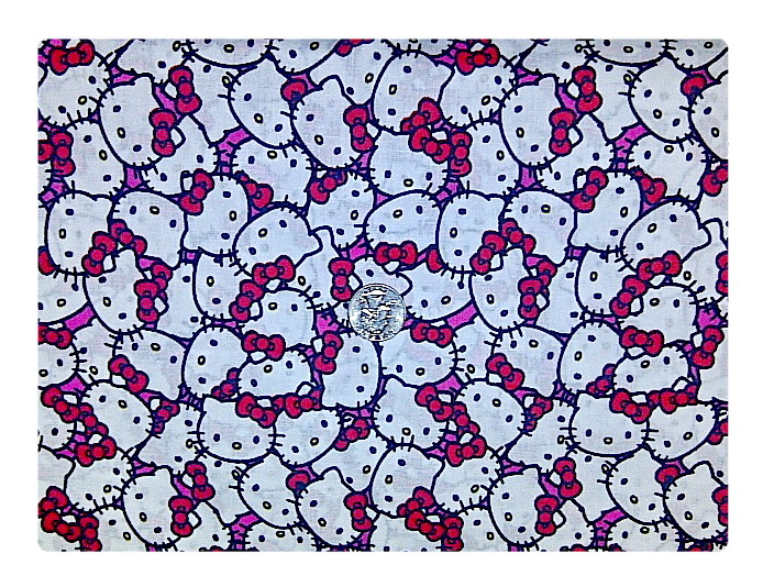 Packed Hello Kitty-