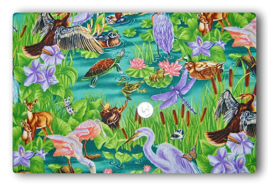 Everglades-