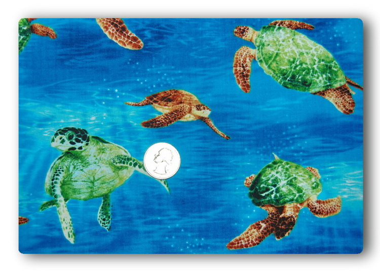 Surfin' Sea Turtles-