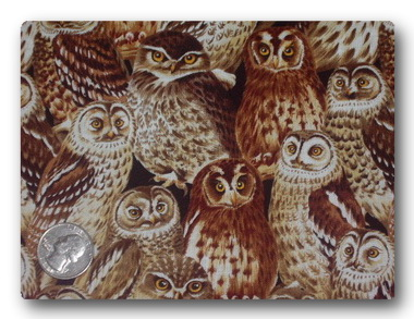 Owls - Give a HOOT-