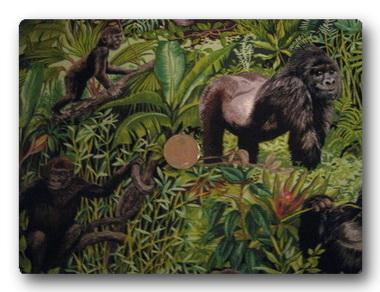 Safari - Gorilla-