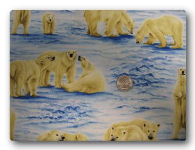 Bears - Polar Bears-