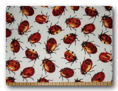 Ladybugs - Red Ladybugs2-