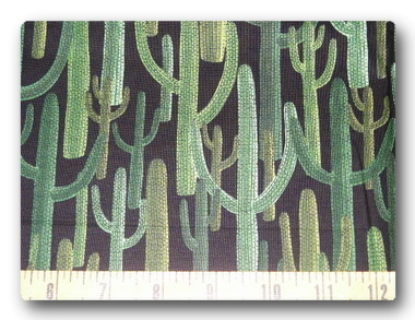 Big Cactus-