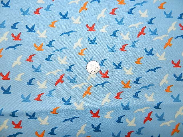 Shore Birds-