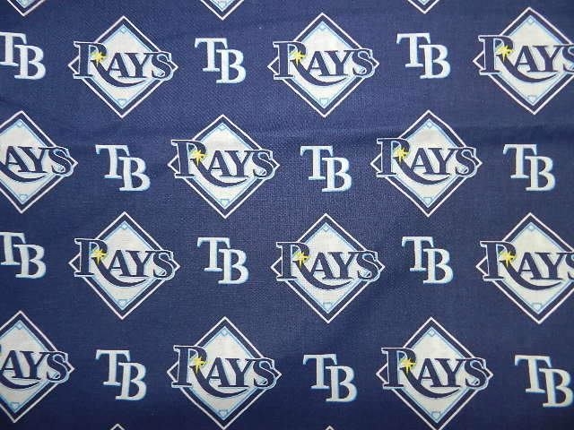 Tampa Bay Rays-