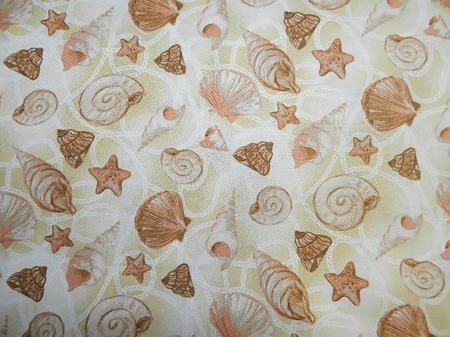 Sea Shells-