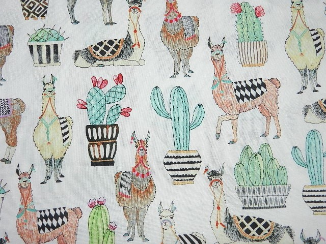 Lovely Llamas on White-
