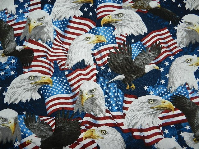 American Pride Eagles-