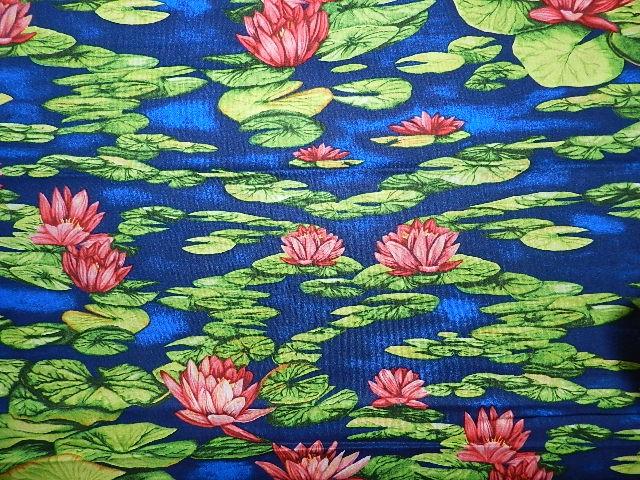 Lily Pond-