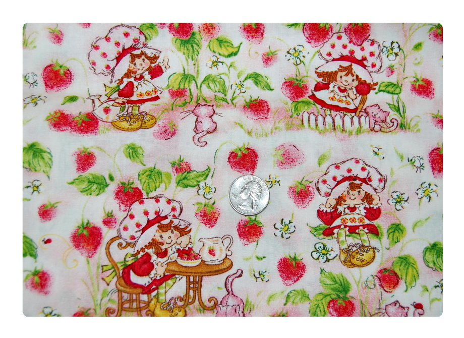 Strawberry Shortcake circa 70s and 80s-