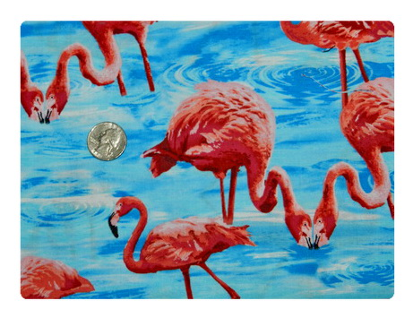 Flamingo Drinking Blue Water-