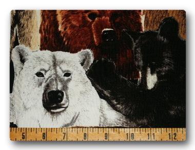 Bears - Bears2-
