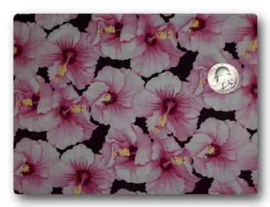 Hawaiian - Hibiscus-