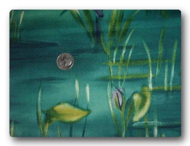 Lily Lake-