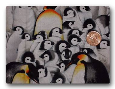 Penguins - Huddled Penguins-
