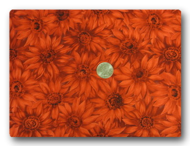 Daisy - Red Daisies-