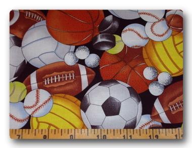 Sports Fanatic-