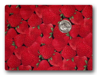 Strawberry Patch-