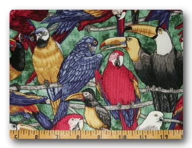 Tropical Birds-