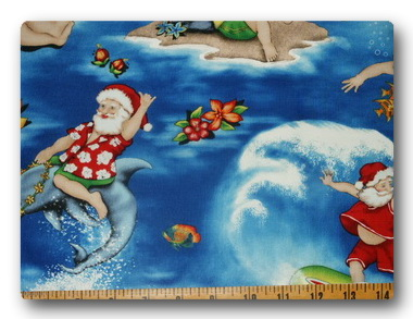 Surfing Santa-