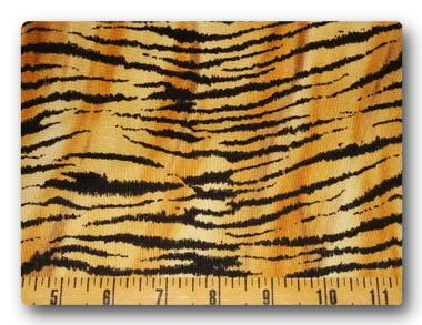 Safari - Tiger Print-