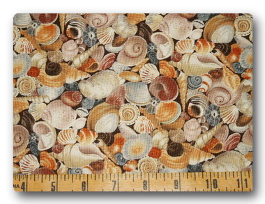Lots of Seashells-
